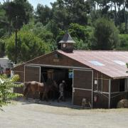Barns en bois