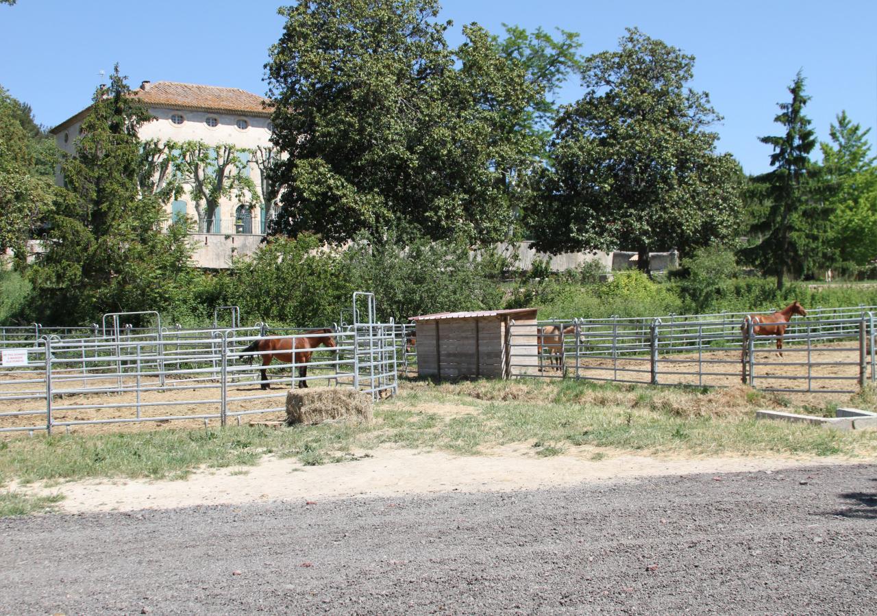 Parc pour chevaux